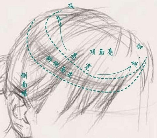 很多人想知道的,素描人物头像头发的画法!